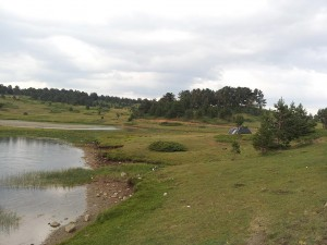 13 Temmuz 2013 - Kirkpinar Yaylasi, Cankiri -14-