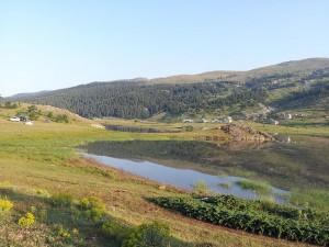 14 Temmuz 2013 - Kirkpinar Yaylasi, Cankiri -01-