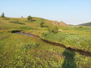 14 Temmuz 2013 - Kirkpinar Yaylasi, Cankiri -03-