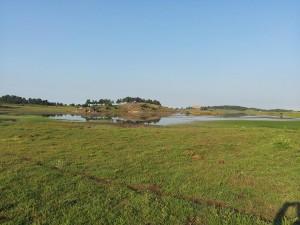 14 Temmuz 2013 - Kirkpinar Yaylasi, Cankiri -04-