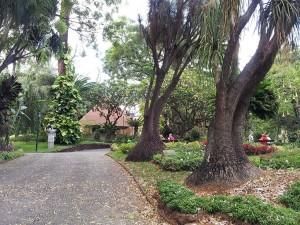 19 Eylul 2013 - Municipal Garden, Funchal, Madeira -1-