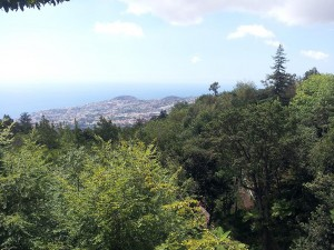 21 Eylul 2013 - Monte, Funchal, Madeira -1-