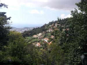 21 Eylul 2013 - Monte, Funchal, Madeira -4-