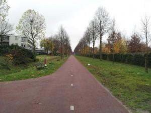 24 Kasim 2013, Hengelo, Hollanda -04-