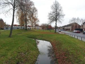 24 Kasim 2013, Hengelo, Hollanda -08-