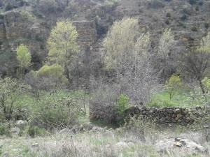 19 Nisan 2014 - Kasabala Vadisi, Beypazari, Ankara -02-