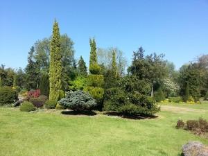 24 Nisan 2015, Karaca Arboretumu, Yalova -01-