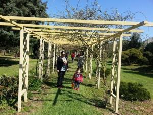 24 Nisan 2015, Karaca Arboretumu, Yalova -03-