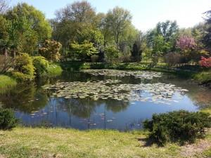 24 Nisan 2015, Karaca Arboretumu, Yalova -04-