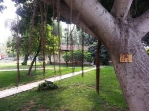 10 Nisan 2016 - Karayollari Dinlenme Tesisleri, Mersin