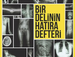 Bir Delinin Hatira Defteri - Poster