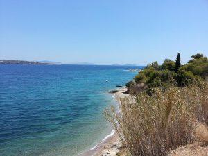 11 Temmuz 2016 - Spetses Adasi, Yunanistan -05-