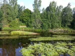 24 Temmuz 2016 - Rydboholm, Boras, Isvec -01-