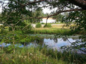 24 Temmuz 2016, Rydboholm, Boras, Isvec -04-