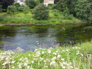 24 Temmuz 2016 - Rydboholm, Boras, Isvec -05-